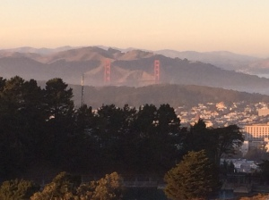We hiked the Twin Peaks Saturday afternoon.  The Golden Gate bridge is in the distance.