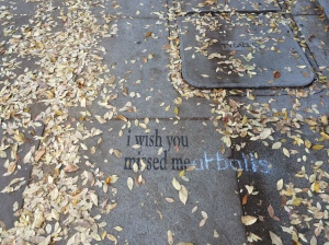 Let's ignore the writing in blue chalk...I saw this on the sidewalk on the walk home from the train station today.