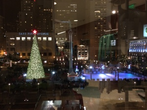 I took this picture from the 6th floor at Macy's looking out at Union Square's tree and skating rink.  The rink is very popular - You have to make online reservations for a one-hour skating time - but is empty here because the Zamboni just cleaned it.