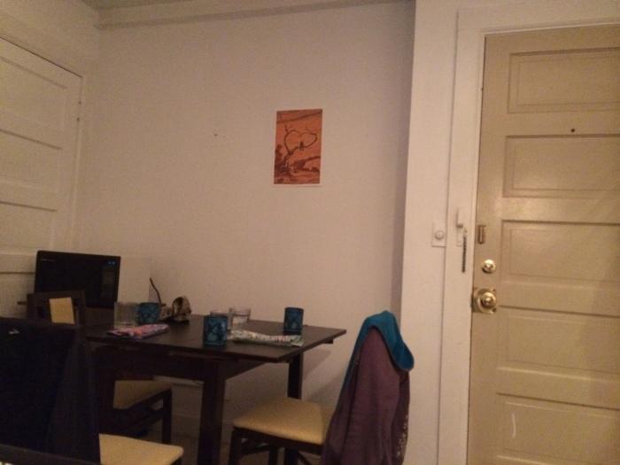 Our elegant dining area :-)