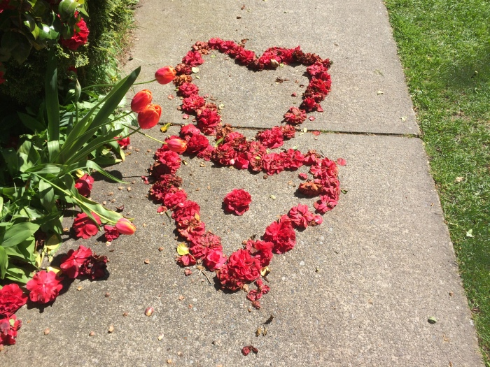 This was on the sidewalk across the street from our house.