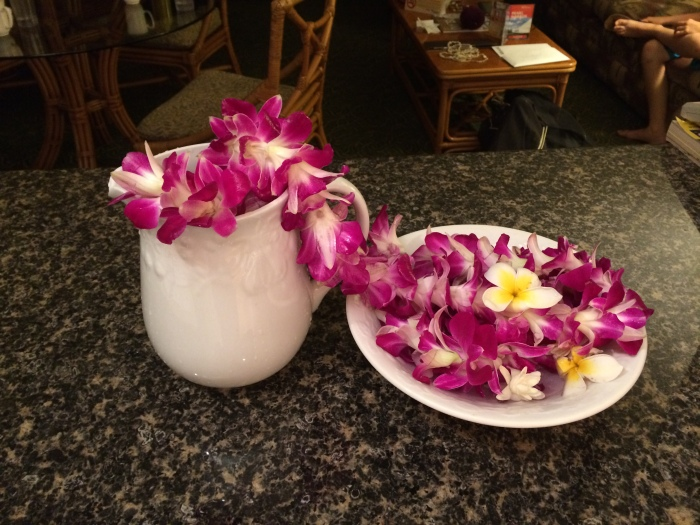The orchid leis were too pretty to throw away, so Laurel found a way to preserve and display them in our condo.