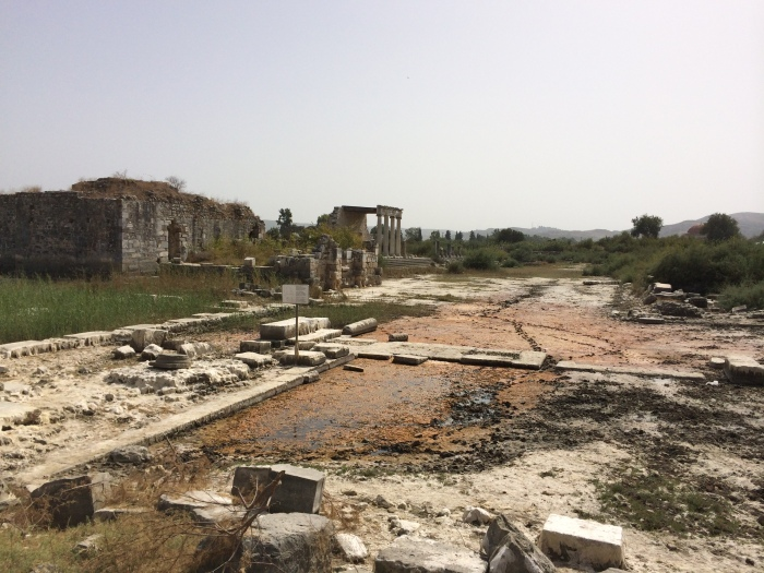 Another Temple to Athena is visible in this photo from Miletus where the ruins cannot be unearthed so quickly as the earth keeps claiming them again.  This area is now swampy much of the year (Note the orange-brown muck.) thus making excavation of further ruins difficult.