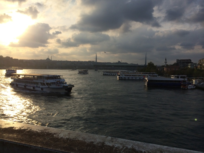Some of the many ferries on the Golden Horn, an inlet of the Bosphorous Strait that separates the old, historic part from the newer sections.