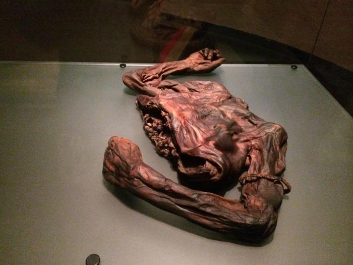 "This portion of a corpse found in an Irish bog several years ago dates to about 200 BC.  Analysis shows he was about 6'6"", 25 years old, had nicely manicured hands (We could still see that in the display.), and had his nipples cut off.  The nipple cutting may have been to show that he would/could never be king because sucking the king's nipples was a sign of submission.  Can't be king with no nipples to suck."